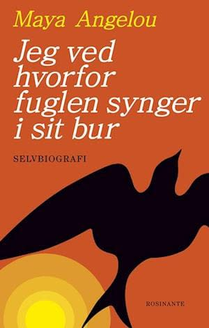 Orange background with graphic yellow sun i right bottom. Across is the silhouette of a black bird. In top author name in yellow and title in white